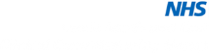 Leeds South and East CCG Logo